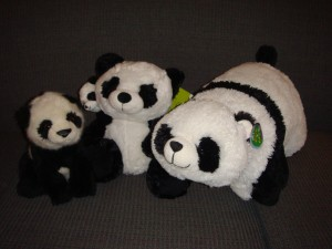 Panda family: Baby, Pete & Paulie, and Scooter.