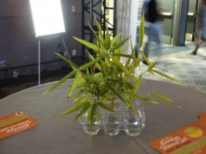 bamboo leaves in water used as decorative centerpiece