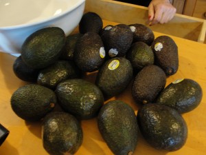 large pile of avocados