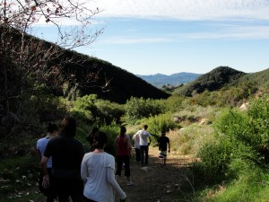 people walking along a hiking trail