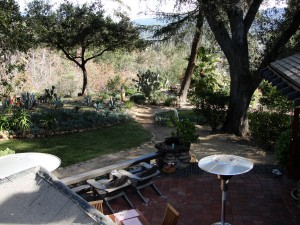 view of backyard from rooftop