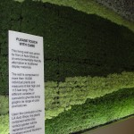 live wall featuring vertical garden