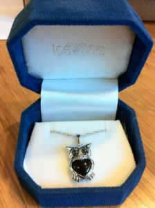 jeweled owl necklace in box