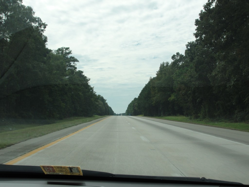 long stretch of highway in north carolina lined with trees