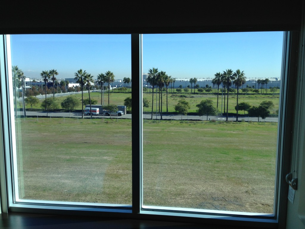 view of field and palm trees from hyatt place