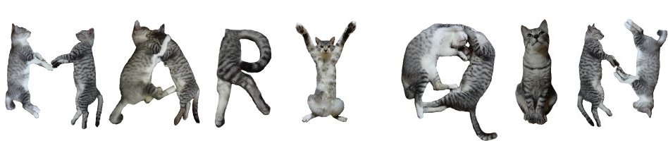 mary qin spelled out in capital letters in neko font using cat images