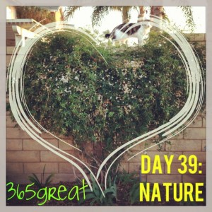 365great challenge day 39: nature