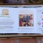 graze box welcome info card