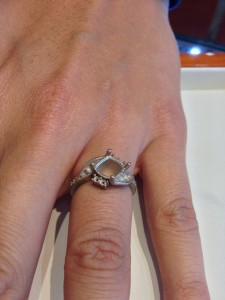bare ring setting with no gems and no polishing