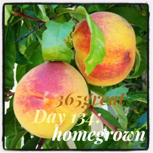 365great challenge day 134: homegrown