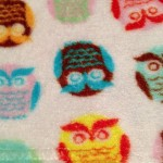 fuzzy cloth with colorful owl design