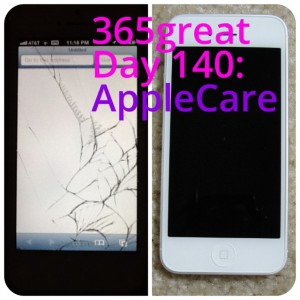365great challenge day 140: applecare