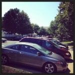 parking area filled with cars in afternoon