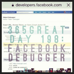 365great challenge day 198: facebook debugger