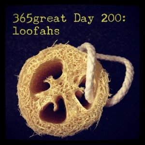 365great challenge day 200: loofahs
