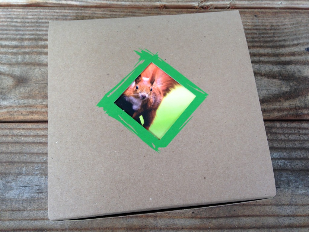 conscious box september inner box with squirrel image