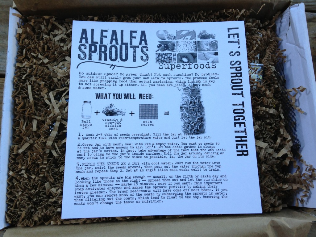 the homegrown collective august 2013 project growing alfalfa sprouts