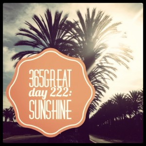 365great challenge day 222: sunshine