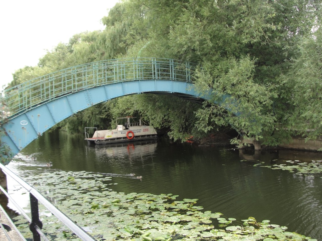 trees overgrown on bridge over river with lily pads and boat