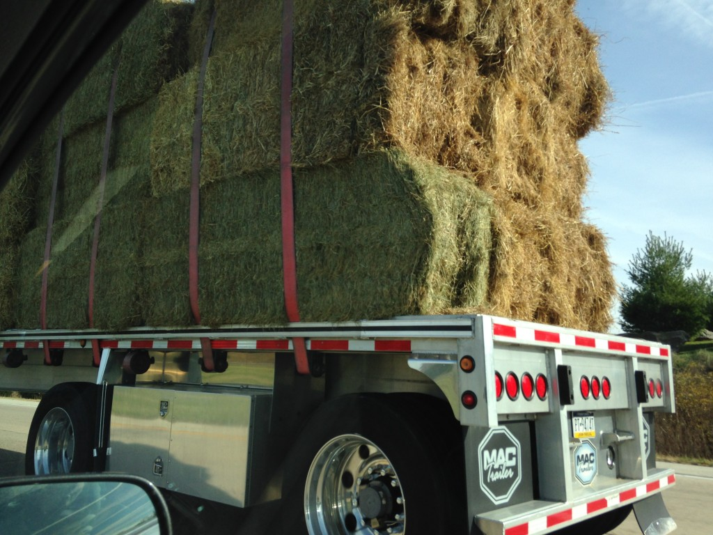 large truck with bales of hay tied down