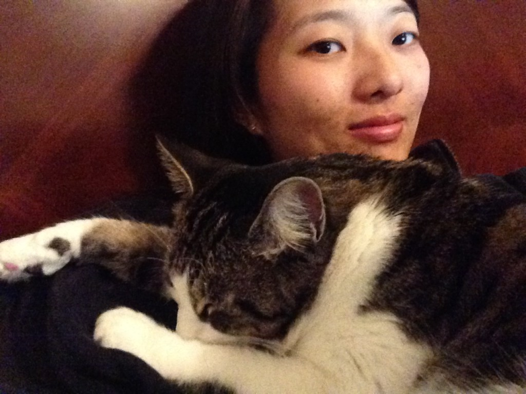 cat sleeping with arms outstretched on person's chest
