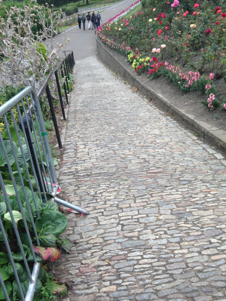 cobblestone path down to princes street gardens lined with multicolored roses