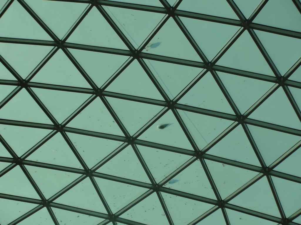 shadows of seagulls seen standing atop dome from inside of british museum