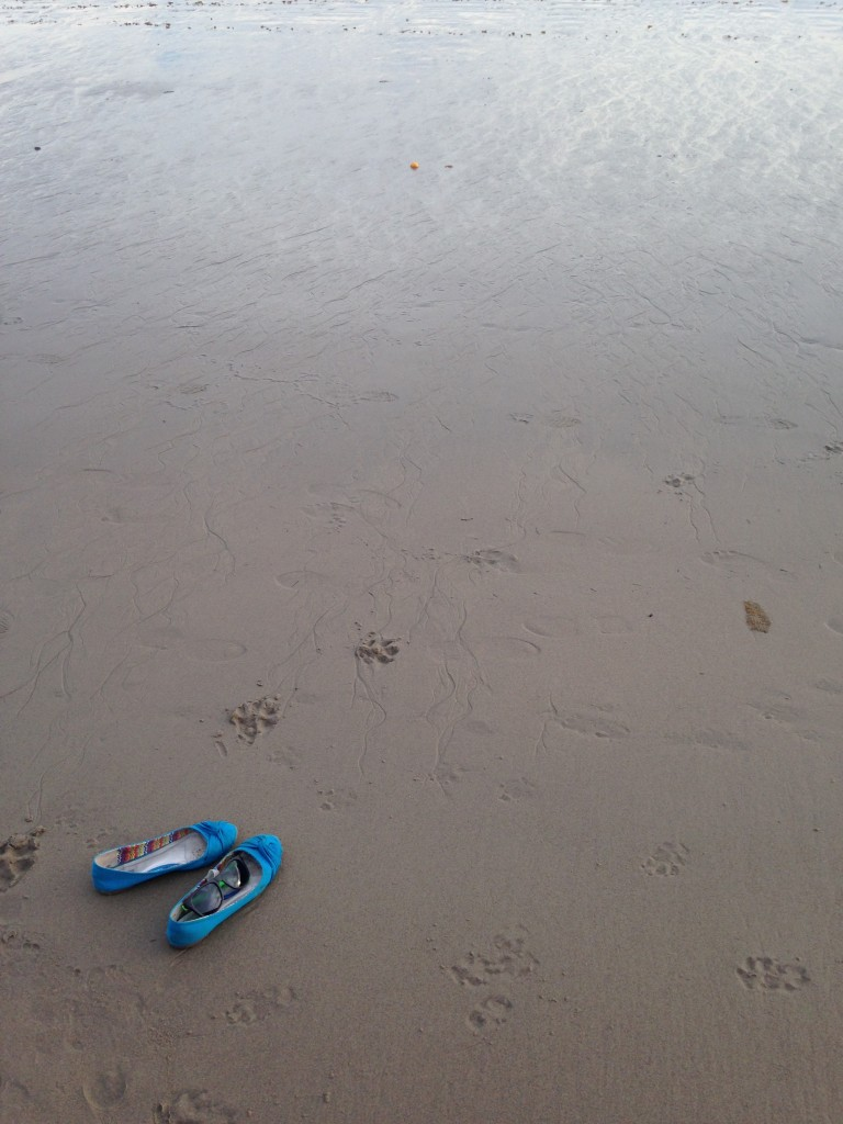 teal flat shoes sitting on wet sand at beach with dog paw prints nearby