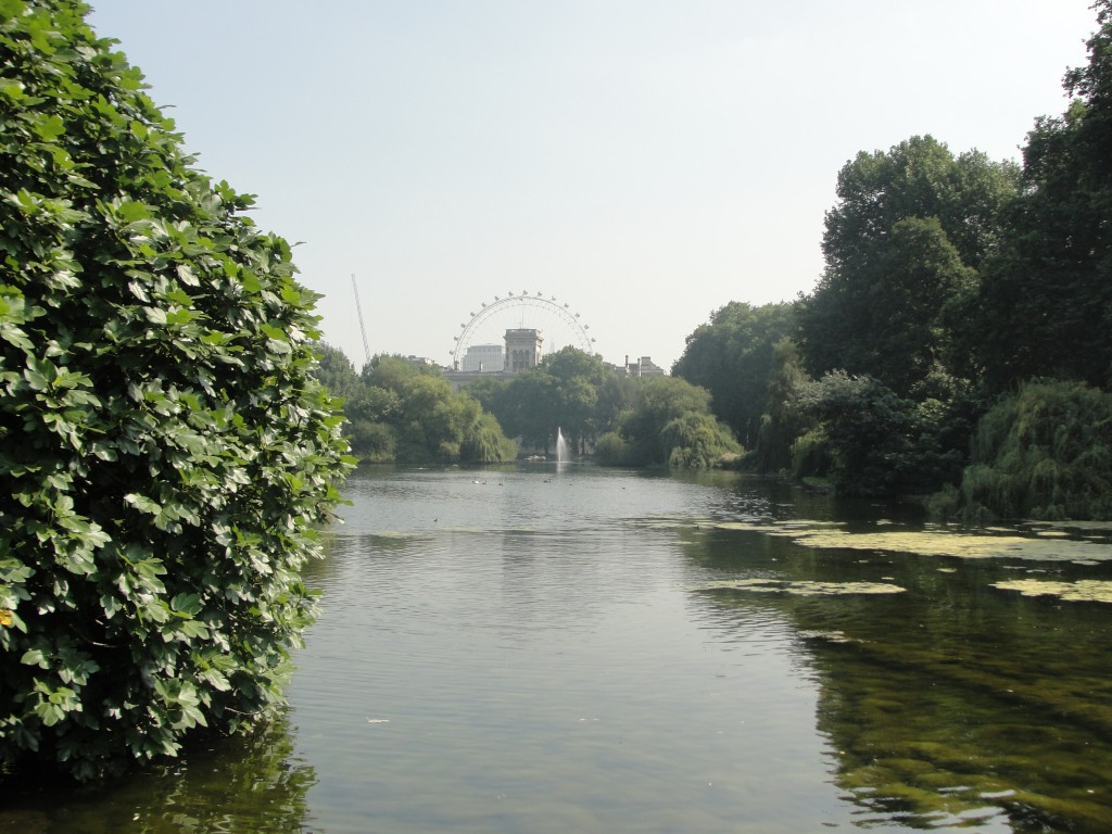 view across st. james's park lake with london eye in distance