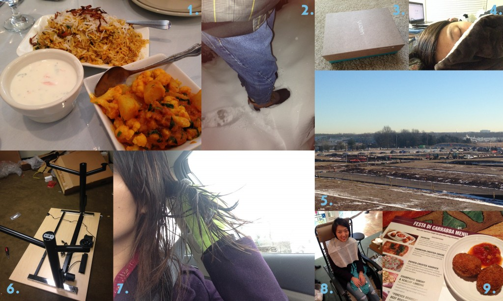 collage of january 2014 favorites including groupons, snow days, yuzen, snuggling, home hopping, moving offices, gloves, origins free facial, and carrabbas first tastes
