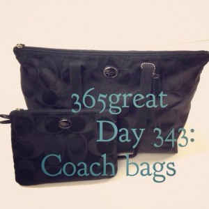 365great day 343: coach bags