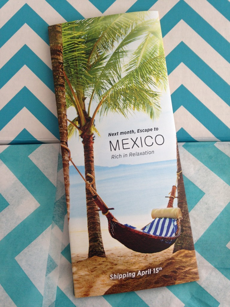 escape monthly march ireland box info card back with preview of next month's box theme of mexico