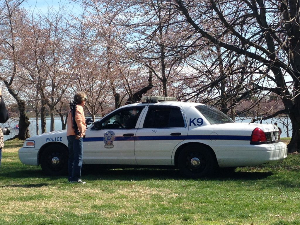 police k9 canine car parked on grass by cherry blossoms as lady stops to ask question