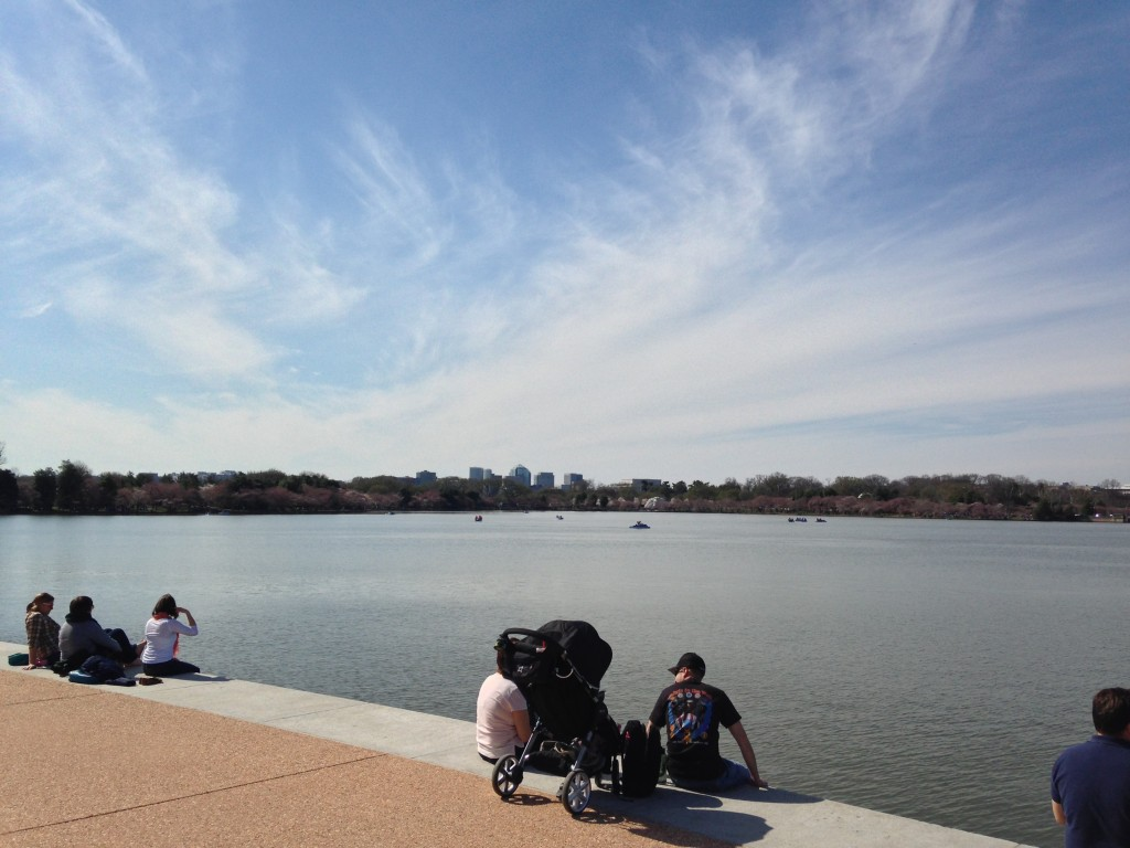 edge of tidal basin by jefferson memorial
