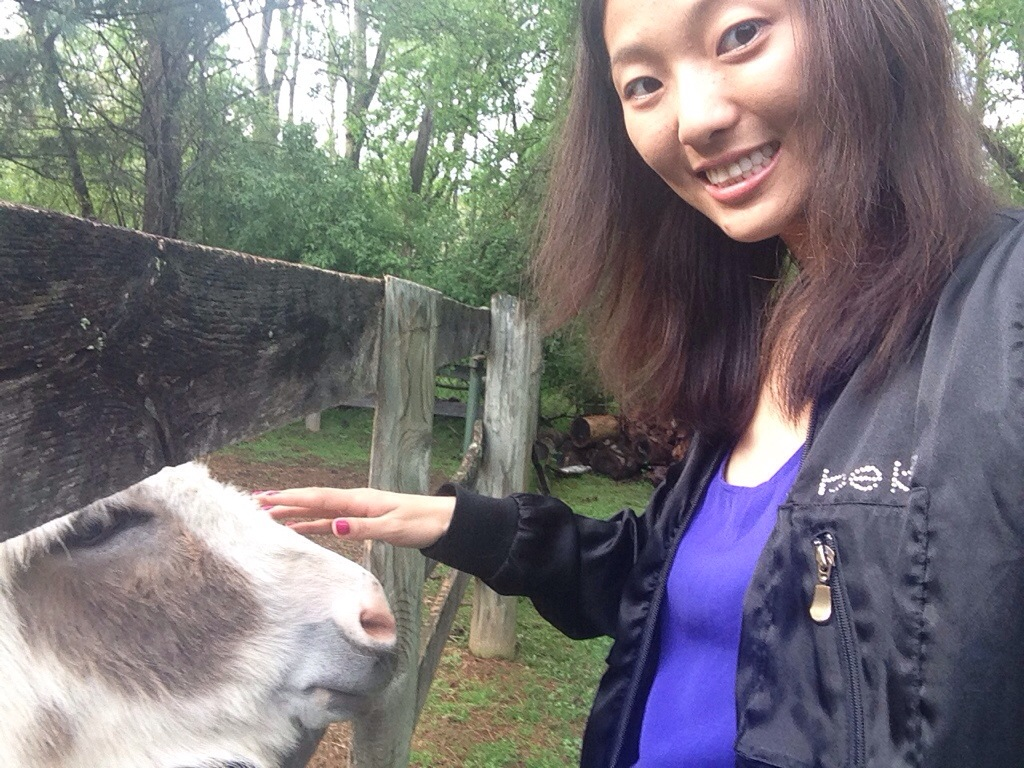 selfie with miniature donkey poking head through fence