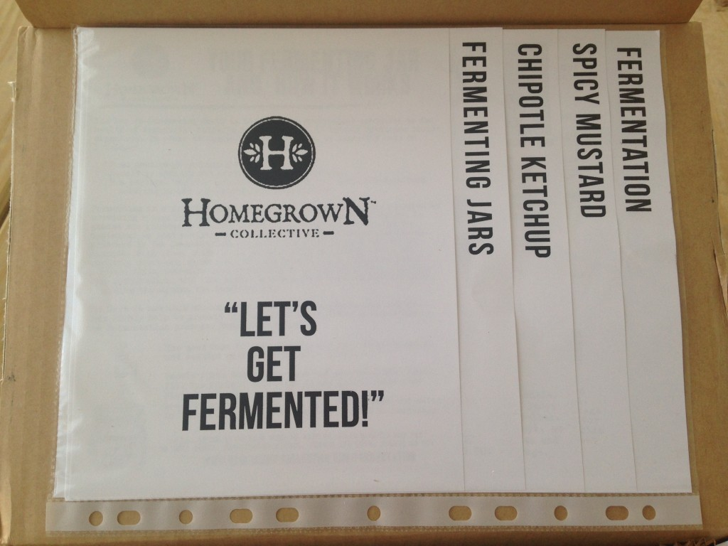 inside of let's get fermented homegrown collective box with the info sheets on the inner lid