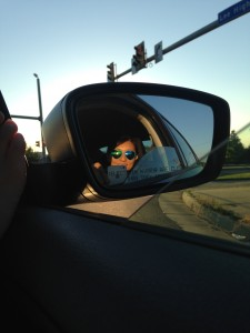 wearing new blue heart-shaped sunglasses seen in mirror of car