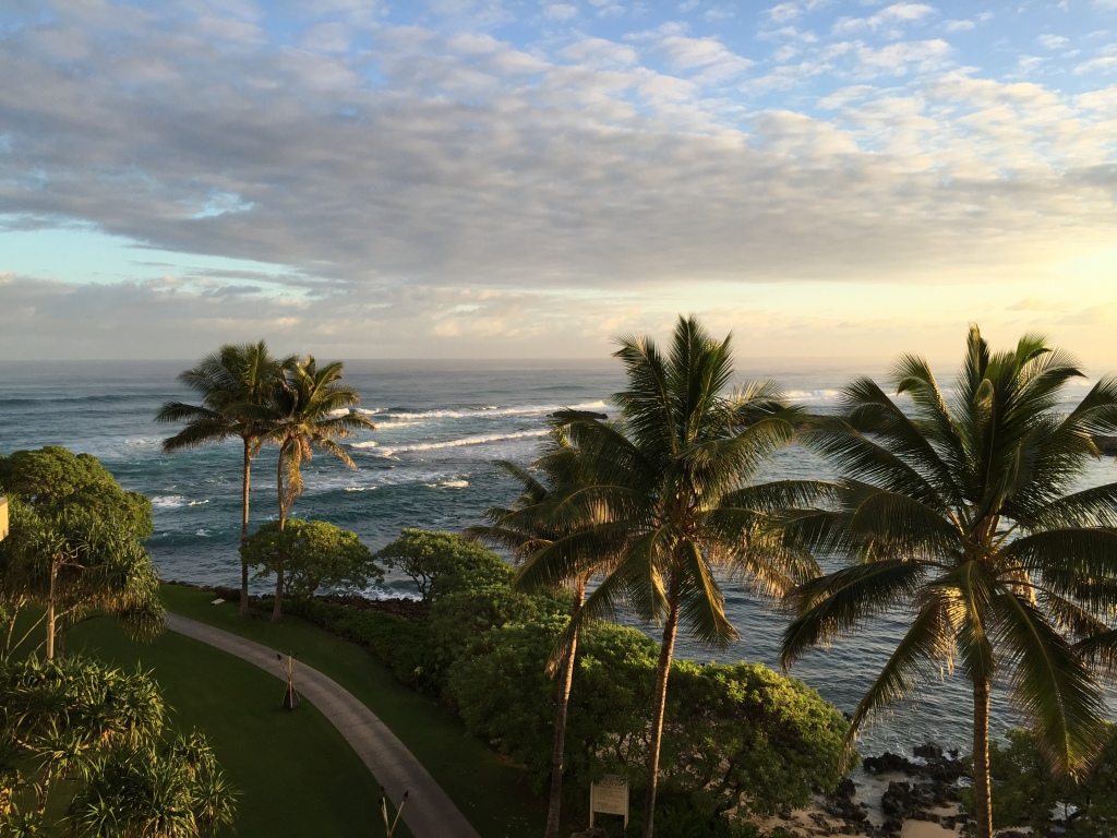 view of turtle bay beach and ocean from turtle bay resort hotel room
