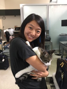 person carrying cat through security at airport