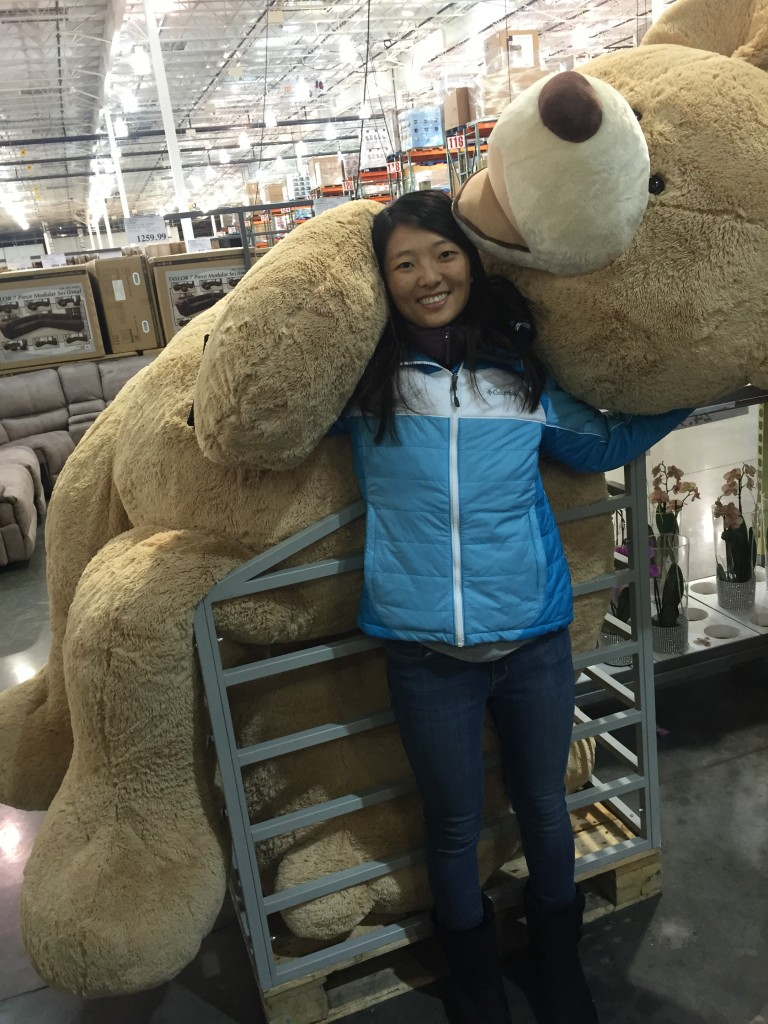 giant teddy bear at costco