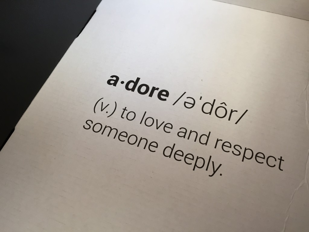 inside of adoreme box with definition of adore printed