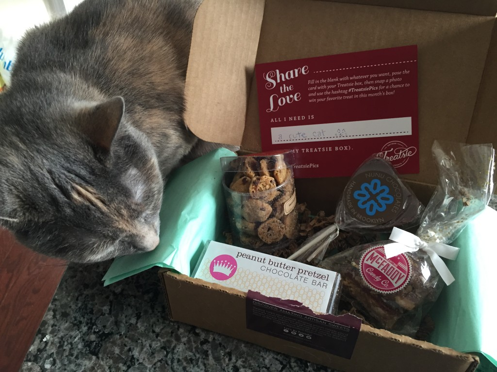 treatsie february 2015 box contents with carla hall petite cookies, chocolate twist peanut butter pretzel bar, nunu chocolates milk chocolate lollipop, and mcfaddy candy co valentine toffee with cat sniffing box