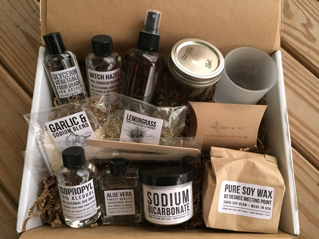 contents of the homegrown collective august 2015 box with bugs, be gone! theme