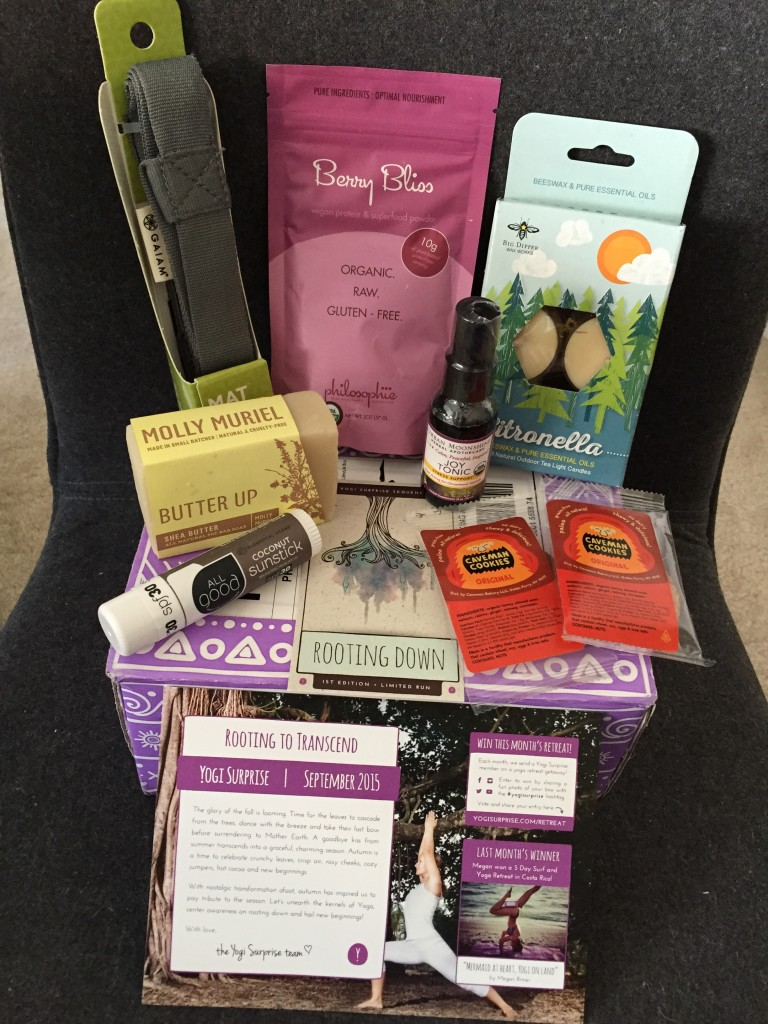 contents of yogi surprise september 2015 box with info card