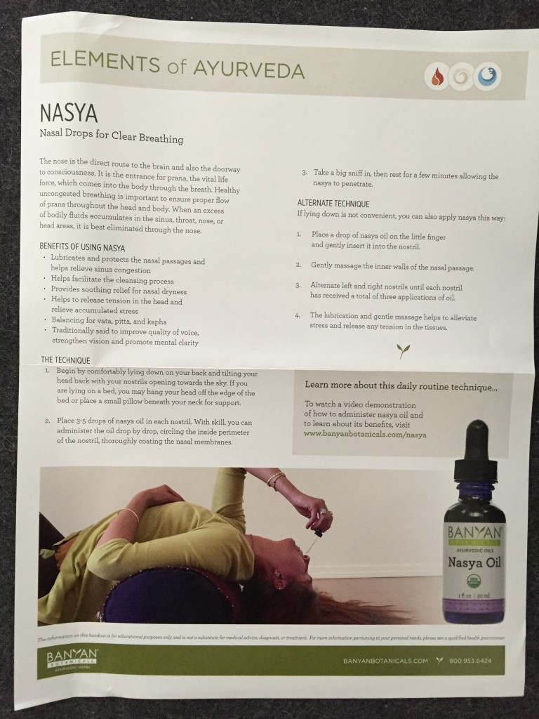 yogi surprise november 2015 product info sheet