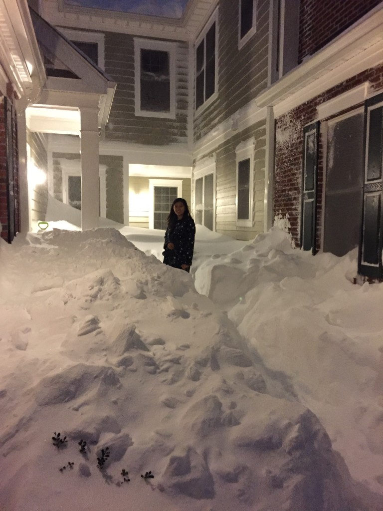 surrounded by high piles of snow from blizzard 2016