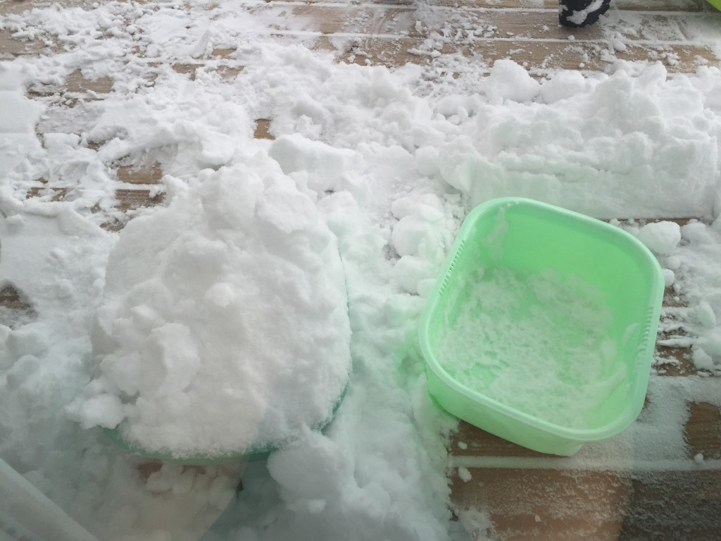 snow in plastic buckets/tubs to clear porch during blizzard 2016